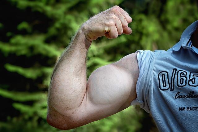 [Musculation] Les meilleurs exercices pour se muscler les bras rapidement !