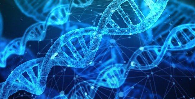 Nos conseils avant de se lancer dans la découverte de son patrimoine génétique