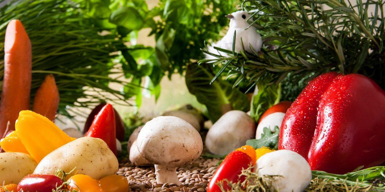 Les aliments bio au secours de nos assiettes, mais également de la planète !