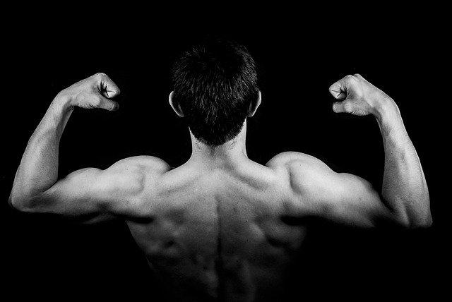 Avant de prendre les peptides de collagène : les questions à se poser